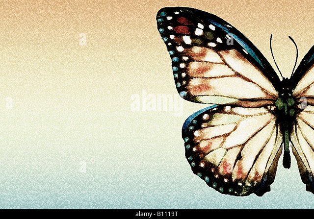 Artistic butterfly - Stock Image