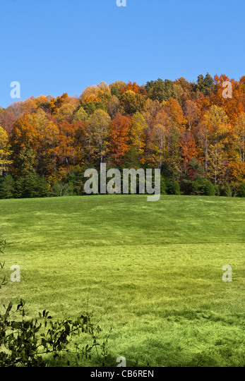 Fall landscape in McMinn County, Tennessee, USA - Stock Image