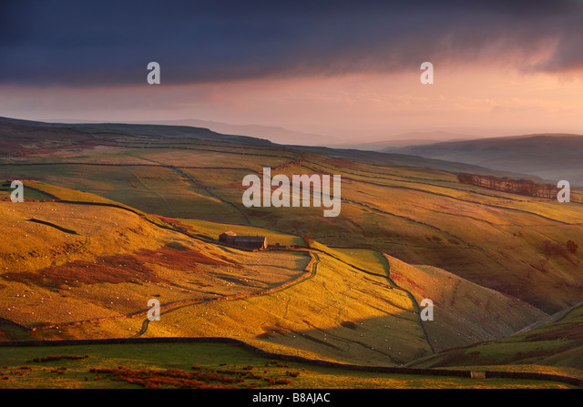 evening light on the stone walls and a farms of Wharfedale, nr Kettlewell, Yorkshire Dales National Park, England, - Stock-Bilder
