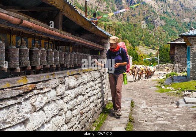 Young Woman Wearing Backpack Trekking Touching Tibetan prayer Wheels or Prayers Rolls Faithful Buddhists.Caravan - Stock Image