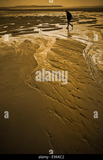 single figure walking on wet sandy beach - Stock Image