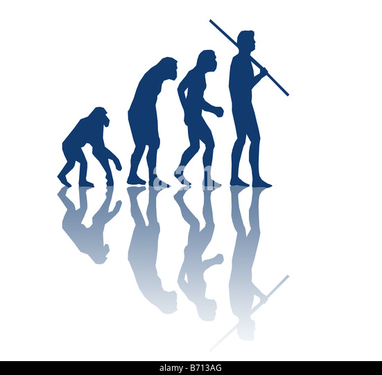 the various stages of mans evolution The timeframe for the stages of man evolution from the ancestor of both man and the modern ape to modern man is not known, but i will give you an abbreviated chronology of what has been.