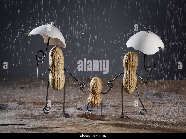 Three peanuts building family with one child in the rain made of salt grains - Stock Image