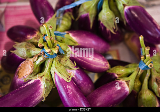 Purple eggplant bunches, high angle view - Stock Image
