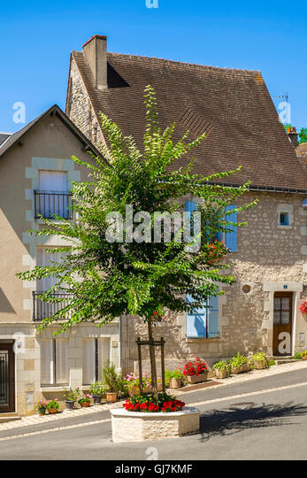 Acacia tree planted on mini roundabout in road, Preuilly-sur-Claise - France. - Stock Image