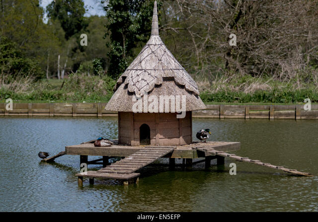 Wooden duck house stock photos wooden duck house stock for House duck