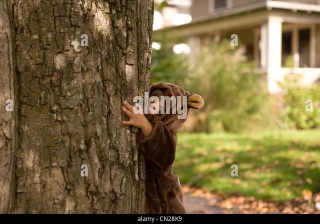 Toddler girl dressed up in bear costume hugging tree - Stock Image