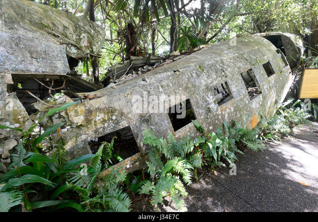 Wreck of a C-47 DL, a military version of a DC-3, seen at Heritage Market, Kuranda, Far North Queensland, FNQ, QLD, - Stock Image