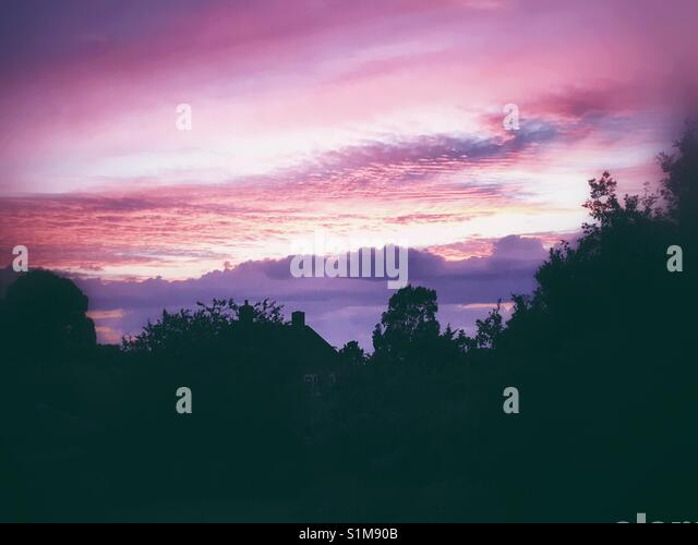 Pink violet sky at sunset - Stock Image