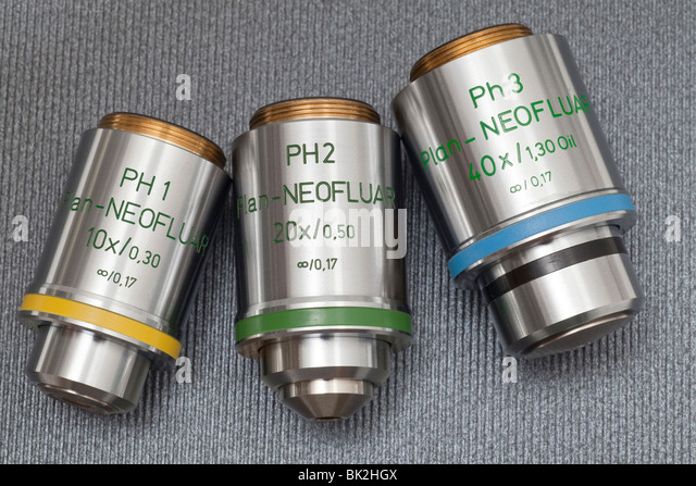 Zeiss microscope phase contrast Plan Neofluar fluorite objectives, infinity corrected - Stock Image