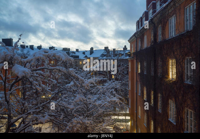 Houses and snow covered tree in winter - Stock-Bilder