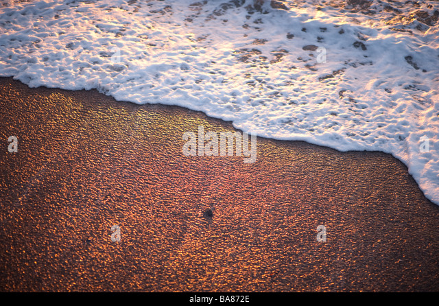 waves lapping on the seashore summer evening - Stock Image