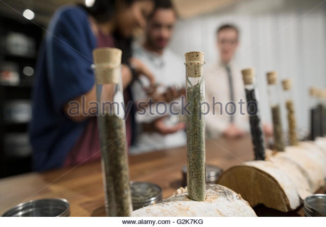 Tea leaves in vials on display in tea shop - Stock Image