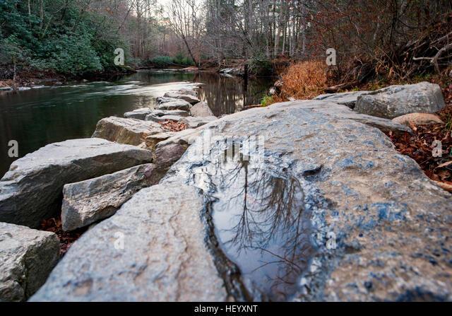 Davidson River - Sycamore Flats, Pisgah National Forest - near Brevard, North Carolina, USA - Stock Image