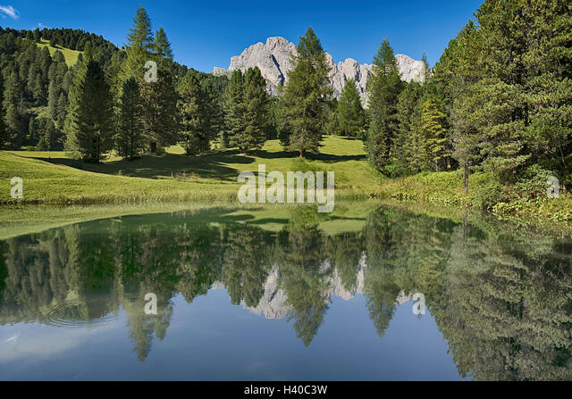 Lake in the forest with the mountains in background, summer season - Trentino-Alto Adige, Dolomites - Stock Image