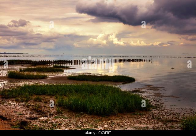 Wattenmeer, Lahnung, Sonnenuntergang, Kampen, Sylt, Schleswig-Holstein, Deutschland - Stock Image