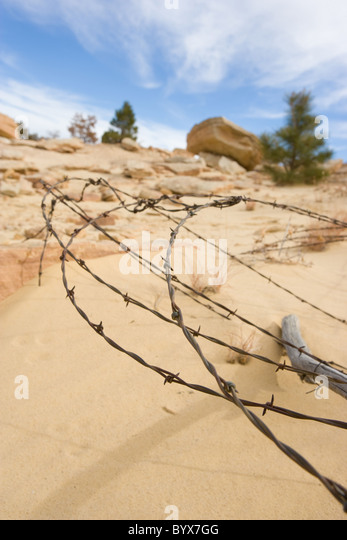barbed wire marking private property, sandy desert, New Mexico, United States - Stock Image
