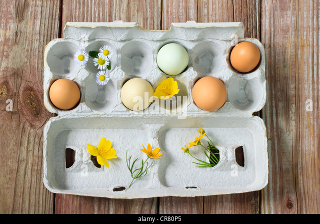 Organic colorful eggs with small flowers - Stock Image