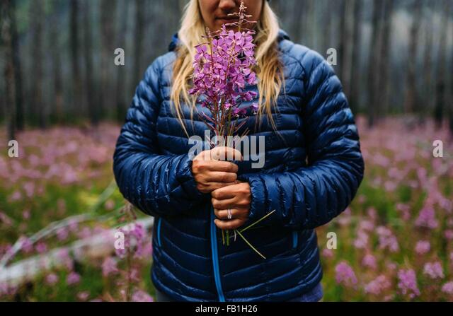 Cropped view of mid adult woman wearing padded coat holding wildflowers, Moraine lake, Banff National Park, Alberta - Stock Image