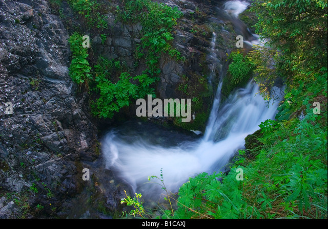 Cascades on creek - Stock Image