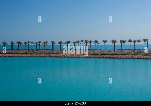 Doha, Qatar, Middle East, city, horizon, palm trees, road, sea, touristic, travel, highway - Stock Image