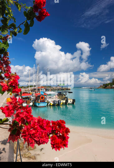 Seychelles, La Digue. Boats in harbor. - Stock Image
