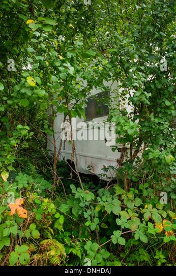 abandoned caravan stock photos abandoned caravan stock. Black Bedroom Furniture Sets. Home Design Ideas
