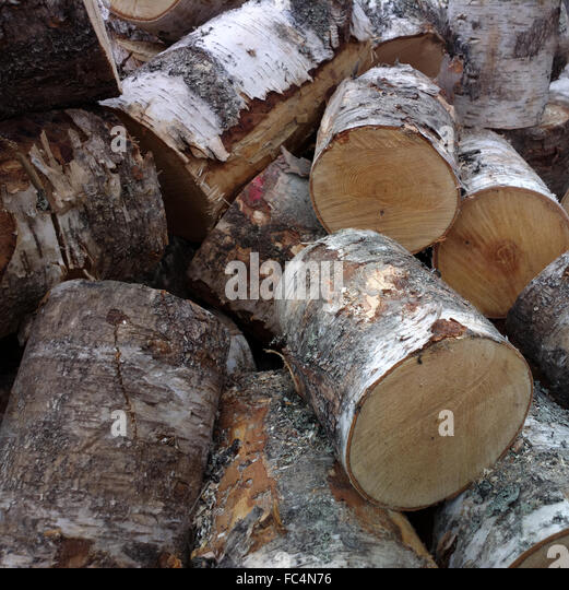Biomass domestic stock photos