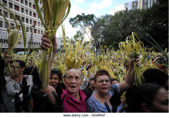 Catholics attend a Palm Sunday procession outside the Cathedral in Tegucigalpa April 1, 2012 REUTERS/Jorge Cabrera - Stock-Bilder