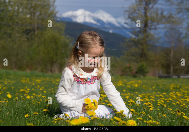 Young girl picking flowers Pemperton British Columbia Canada - Stock Image