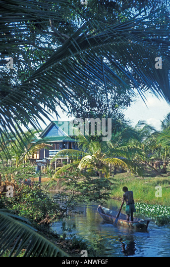 Nicaragua miskito mosquito indian poling small dugout boat on small creek - Stock Image