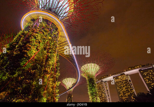 Garden Rhapsody music and lights show in the Supertrees at Gardens by the Bay, Singapore, Malaysia, Southeast Asia, - Stock-Bilder