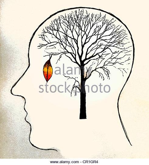 Single leaf hanging on barren tree in man?s head - Stock-Bilder