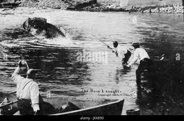 Two African American men are wading into water, attempting to catch an over-sized bass, while a third African American - Stock Image