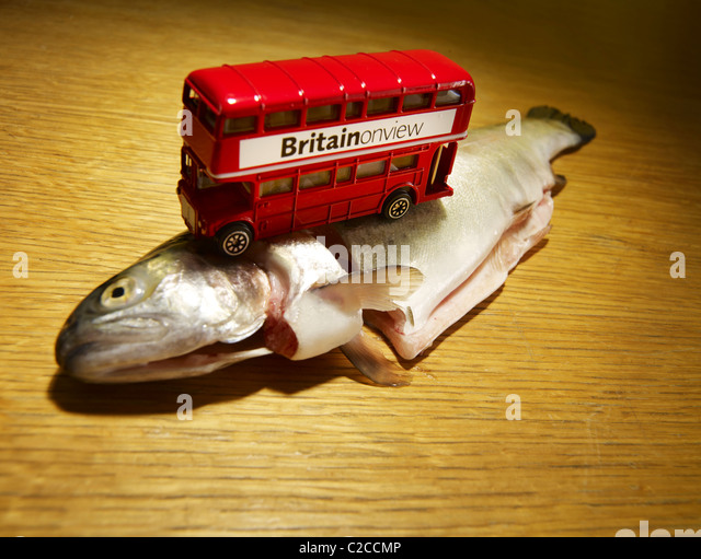 London bus on a trout - Stock Image