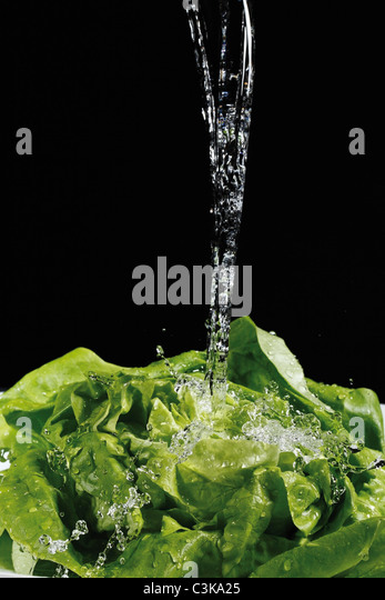 Lettuce under jet of water, close up - Stock Image