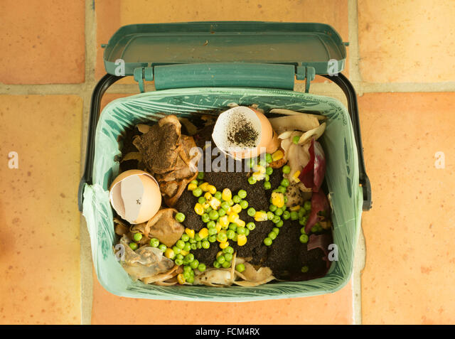 food waste - indoor food recycling caddy full of kitchen waste for recycling or composting - Stock Image