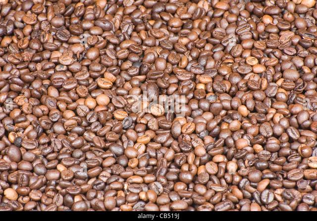 Coffee beans background - Stock-Bilder