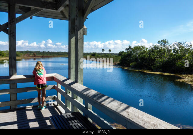 Florida Everglades National Park Ernest Coe Visitor Center observation deck lake girl looking - Stock Image
