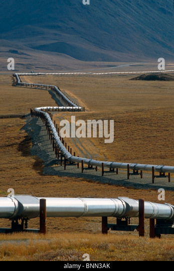 Trans-AK Pipeline in Brooks Range North Slope AR AK Autumn - Stock Image