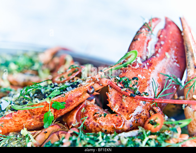 Prepared lobster, close-up, Sweden. - Stock-Bilder