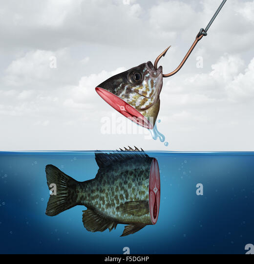 Disappointing profit business concept as a partial fish head on a hook with tehe rest of its body still in the water - Stock-Bilder