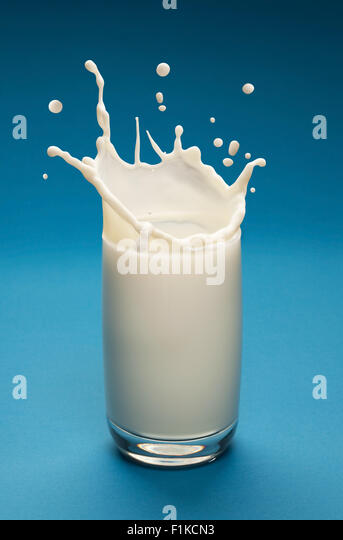 Splash of milk in the glass with separated drops. Blue background. - Stock Image