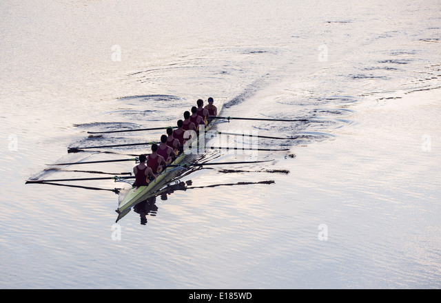 Rowing team rowing scull on lake - Stock-Bilder
