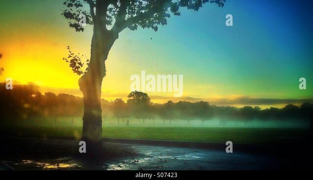A misty morning on Peckham Rye - Stock Image