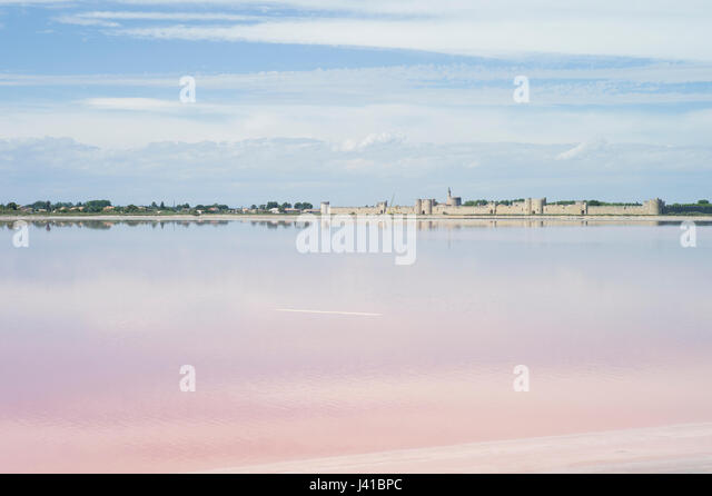 Salt marshes near Aigues-Mortes, Camargue, Gard, Languedoc-Roussillon, France - Stock Image