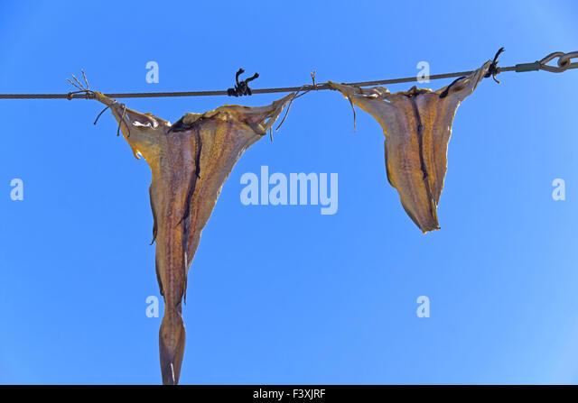 Trockenfische Stock Photos & Trockenfische Stock Images - Alamy