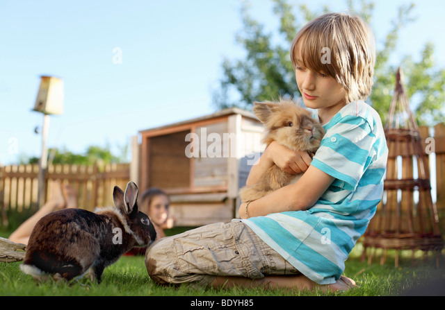 Boy playing with rabbit in garden - Stock Image