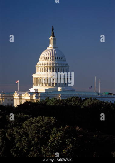 U.S. Capitol Building, Washington, D.C. - Stock Image