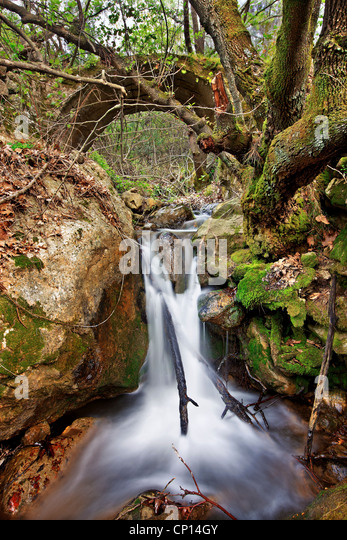 Walking in the gorge of Kambia, the most beautiful trail, on the north part of Chios island, Northeast Aegean, Greece - Stock-Bilder